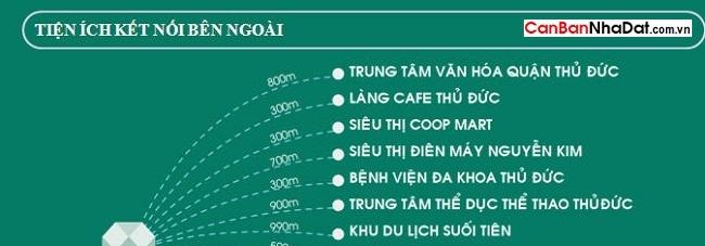 ket-noi-ben-ngoai-emerald