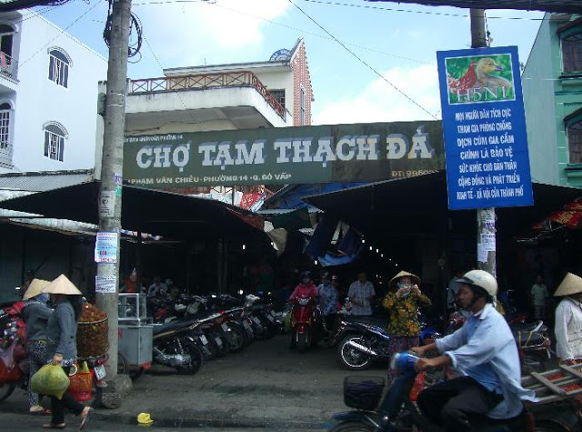 cho-thach-da-sunview3